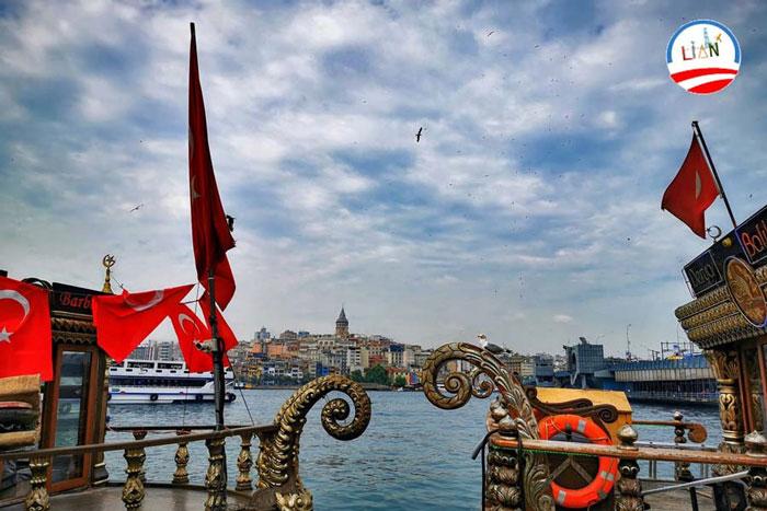 استخدام مشاور املاک در ترکیه